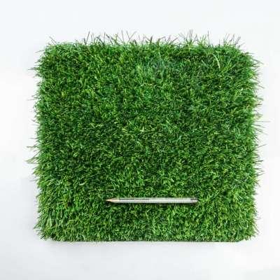 Modello Venezia Verde su Verde